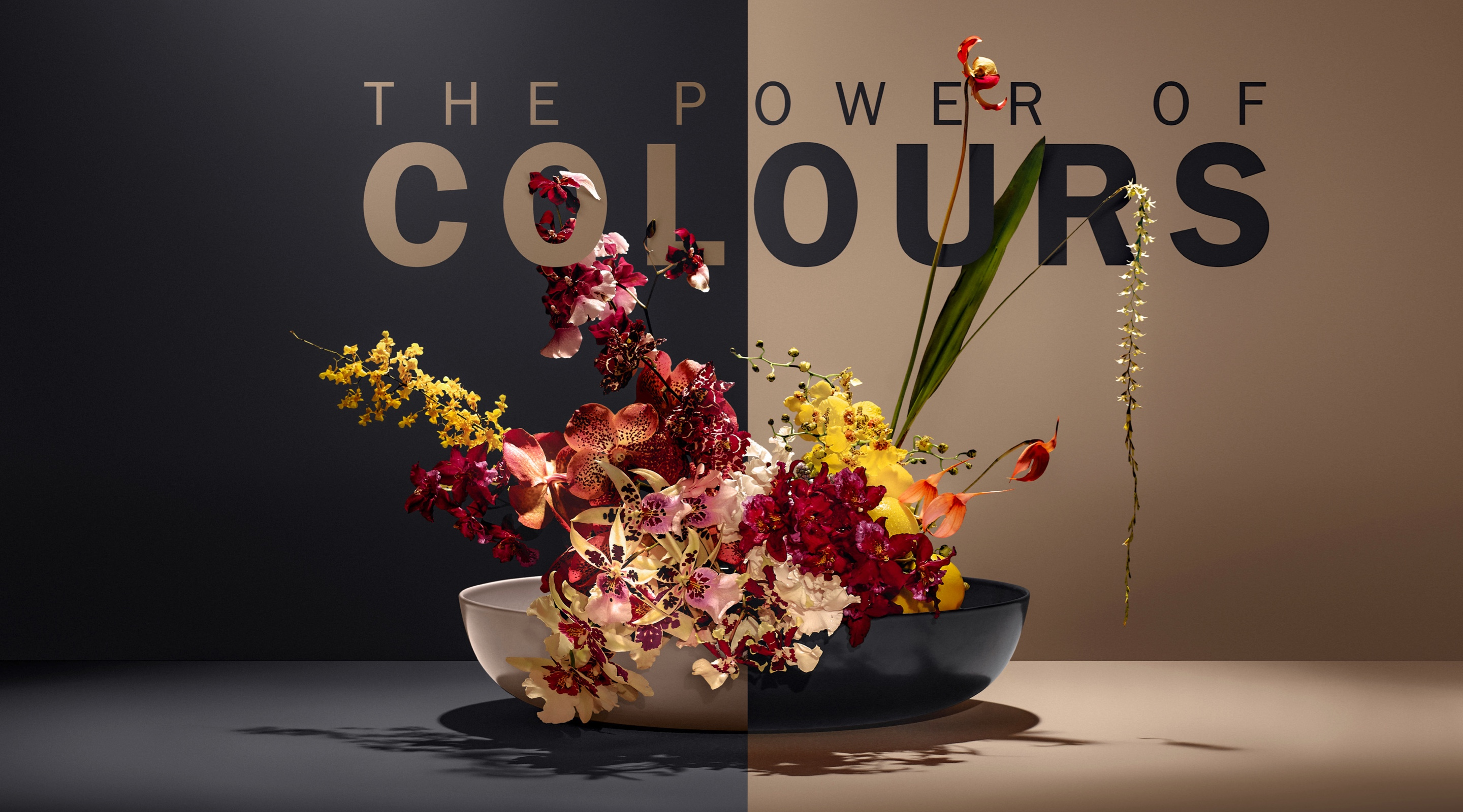 The Power of Colours